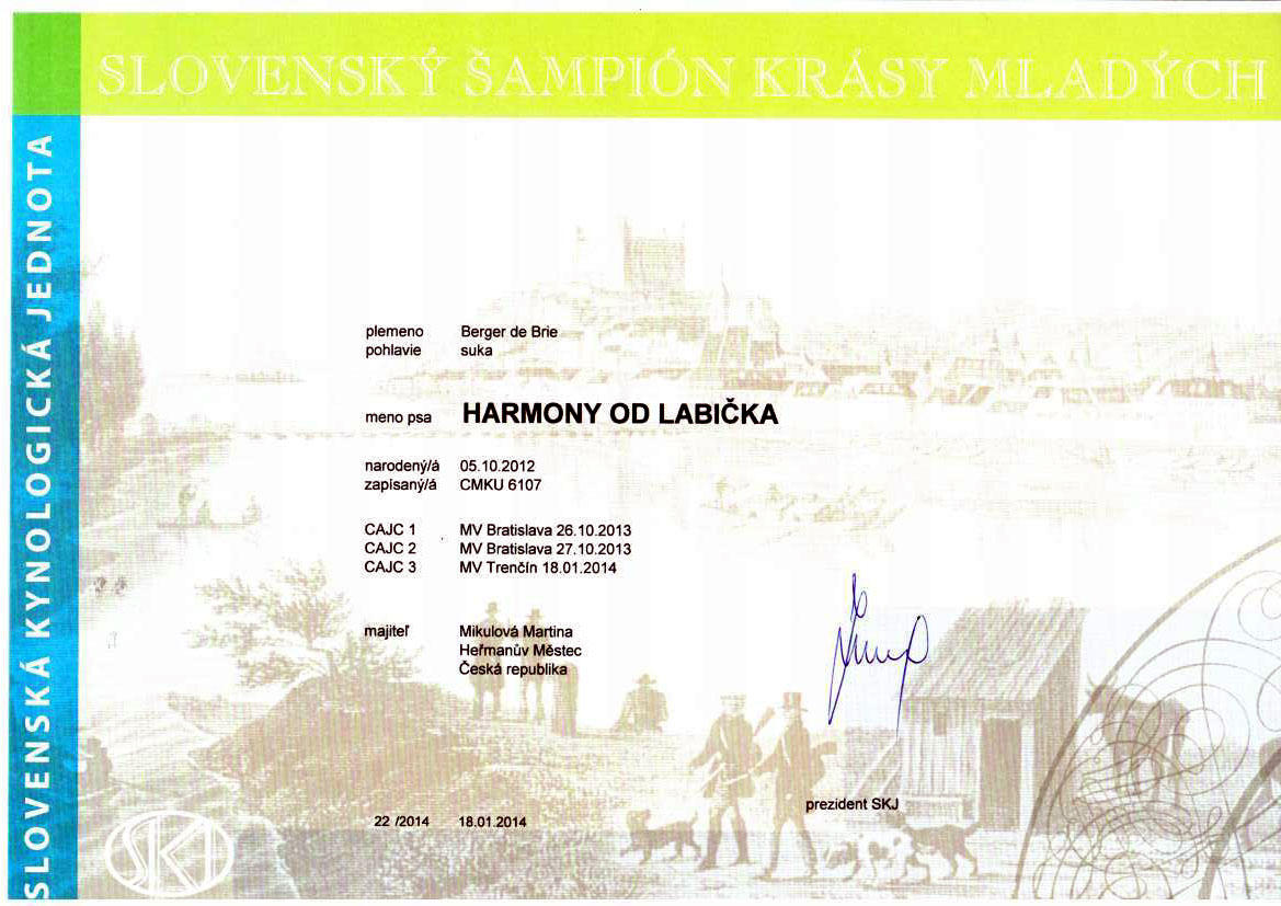 Harmony slovensky junior sampion